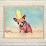 Арт постер Собачка в короне