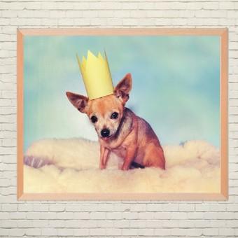 Арт плакат Собачка в короне