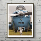 Art poster The blue airplane